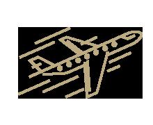 VIP prize - flights